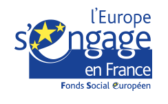 Logo FSE en France